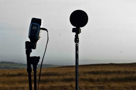 How Can You Record a Sound Without Wind Noise?